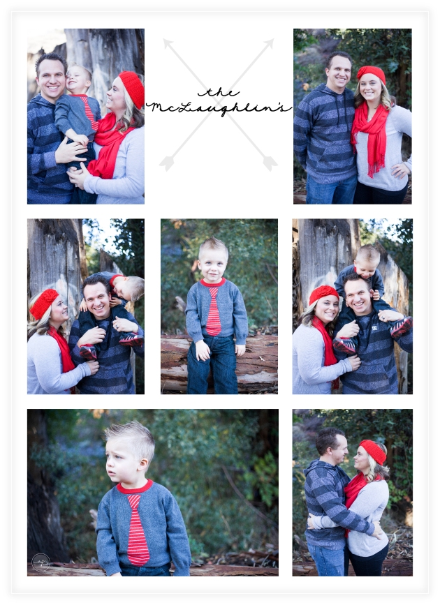 picture preview mclaughlin family